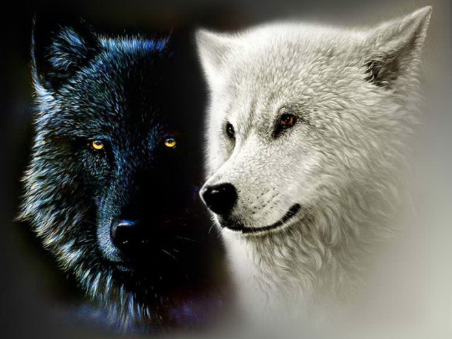 two-wolves-of-life1